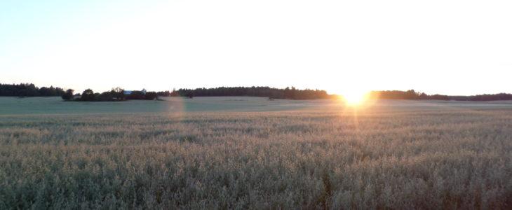 Klimaat Zweden - Vakantie Zweden Tips