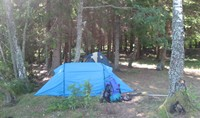 Wildkamperen Zweden - Tent opzetten