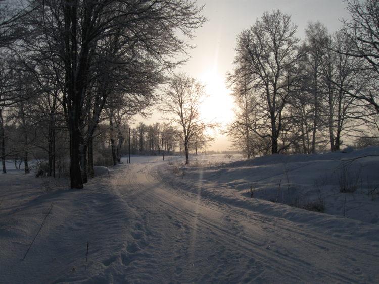 Vakantie Zweden Tips - Winter
